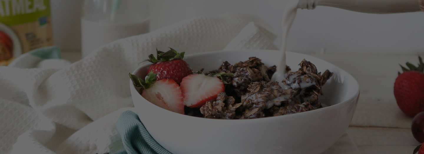 Bowl of oats with strawberries